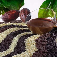 Schokinag 64% Dark Chocolate couverture 11 lbs